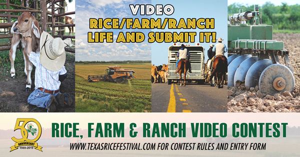 Texas Rice Festival   Annual Festival located in Winnie, Texas